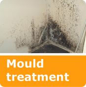 services mould treatment