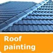services roof painting