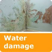 services water damage